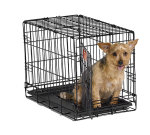 iCrate 1522 Single Door Folding Dog Crate