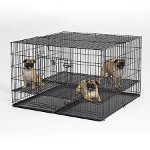 "Midwest 248-10 Puppy Playpen 1"" Square Floor Grid"