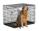 iCrate 1542DD Double Door Folding Dog Crate