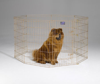 Midwest 544-36 Gold Zinc Exercise Pen With Door