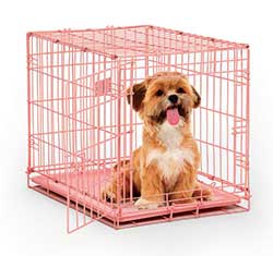 iCrate 1524PK Single Door Folding Dog Crate in Pink