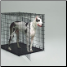 Great Dane in Crate (1154U Pictured, SL54DD Has Extra Side Door)