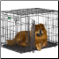 iCrate 1536DD is suitable for dogs 41 - 70 lbs