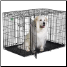 iCrate 1548DD is suitable for dogs 91 - 110 lbs