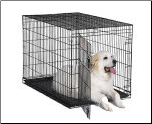 iCrate 1548 Single Door Folding Dog Crate