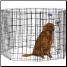 Eight Panel 42 Inch Tall Exercise Pen With Door