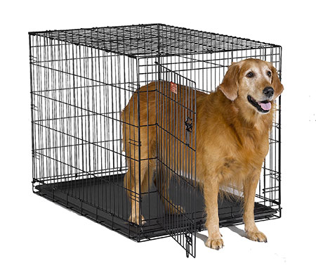 icrate single door folding dog crate - Collapsible Dog Crate