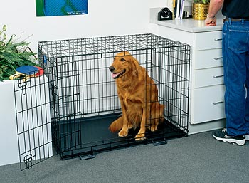 Life Stages Dog Crate Life Stages Crate Midwest Life