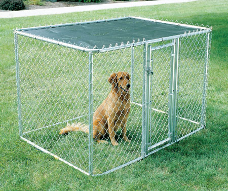 Midwest Chain Link K9 Kennel and Dog