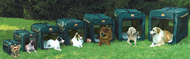 Soft Sided Pop Up Portable Dog Crates Out Doors