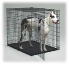 Great Dane Dog Crate Model 1154U