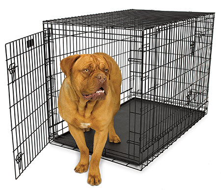 Midwest Ultima Pro Triple Door Folding Dog Crate